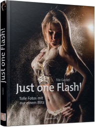 Just one Flash!, ISBN: 978-3-86490-209-3, Best.Nr. DP-209, erschienen 12/2014, € 29,90
