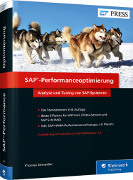 SAP-Performanceoptimierung, ISBN: 978-3-8362-4479-4, Best.Nr. RW-4479, erschienen 08/2017, € 79,90